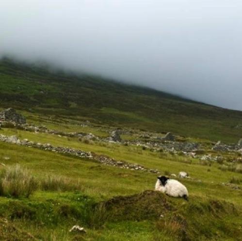 http://www.thephotographer.ie/albums/images/west-of-ireland/Mist%20in%20West%20of%20ireland_g2it5.jpg